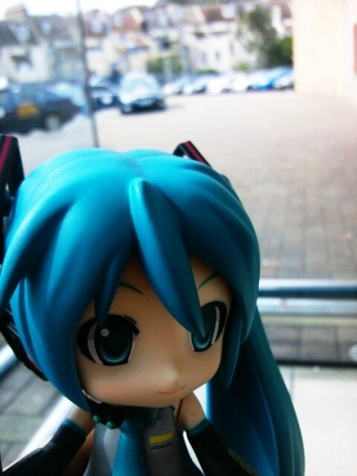 Little miku's big adventure!