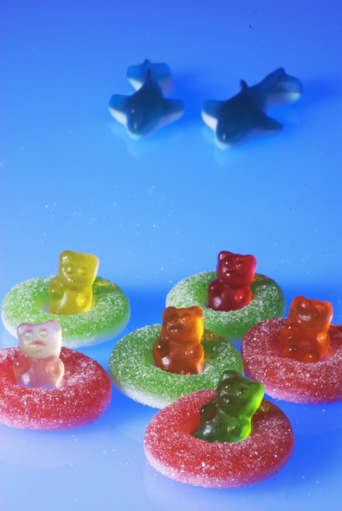 Gummy Bear shark Attack by Elly Stewart Photography
