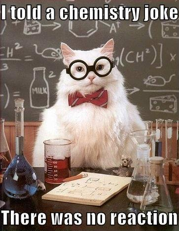 memejelly:  Chemistry Cat: At Least It Wasn't Negative