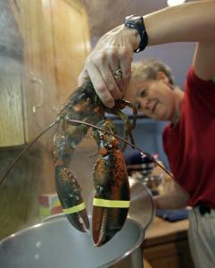 "Concord author pulls the lid off lobsters' tale - As a self-described ""military brat"" who spent her childhood at various locations throughout the country, Elisabeth Townsend recalls her family occasionally treating themselves to lobster for dinner - or what she then thought of as a lobster dinner."