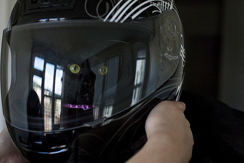Motorcycle helmet use is a proven way to save lives. Photo by ©m.toyama