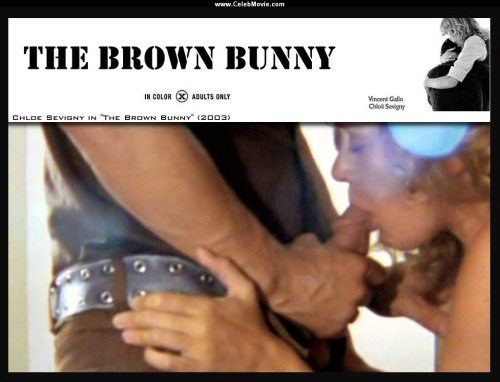the brown bunny 2003, vincent gallo & chloe sevigny