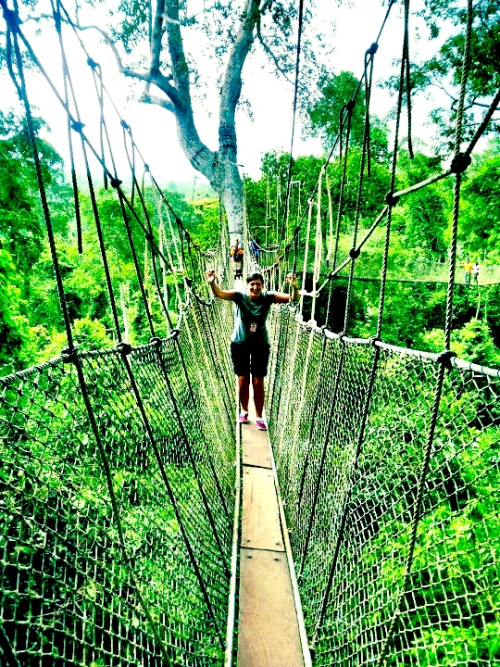 No hands at a canopy walk in Ghana.