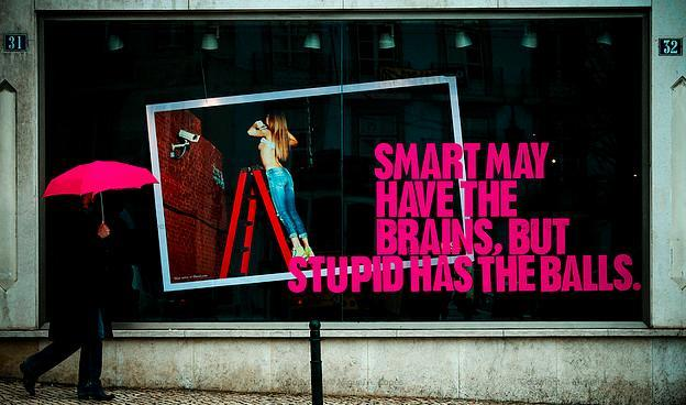 Smart may have the brains, but stupid has the balls..