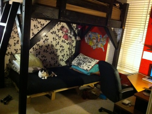 UC Davis, off-campus room set-up at home. Part 1.(submitted by megannagemmegan, thanks)