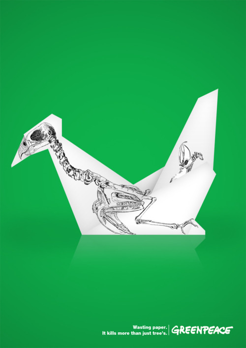 jaymug:  Greenpeace - Wasting paper. It kills more than tree's.