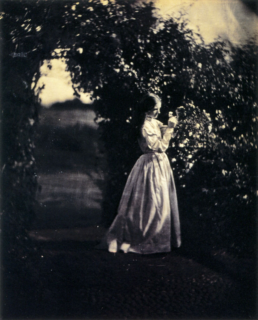turnofthecentury:  The Gardener's Daughter, 1867 by Julia Margaret Cameron