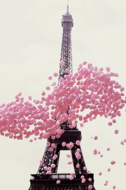 Paris  Balloons