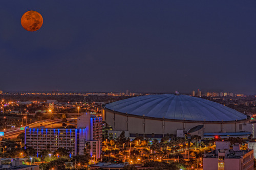 stadium-love-:  The Trop by Matthew Paulson Tropicana Field: Home of the Tampa Bay Rays