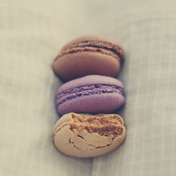 chocolate, blackberry and coffee macarons. Photo by Luminous Lu