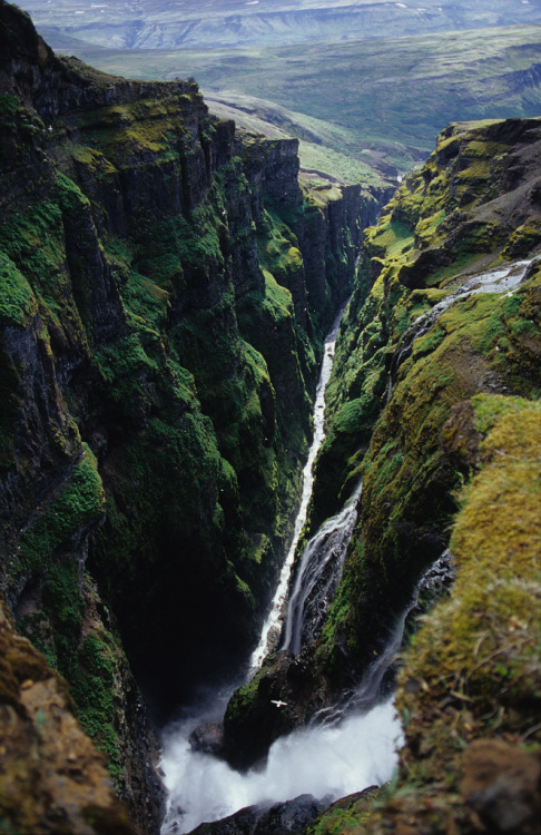 "Glymur formerly Iceland's highest waterfall You know how Iceland is always changing. Well most textbooks will say that Glymur at 198 meters (650ft) is the highest waterfall in Iceland. A new (still unnamed) waterfall in the Morsárdalur valley in Skaftafell appeared last year. The waterfall had been hidden by the Vatnajökull glacier, but was exposed as the glacier retreated. Still, Glymur is an awesome waterfall situated in this amazing canyon. The waterfall, directly underneath the photographer in this picture, crashes down into the narrow 200 meter deep canyon with a thunderous noise. This thunderous noise is actually the reason why it is called Glymur. Glymur is a word for a ""thundering echo"". There are also other explanations for the name. According to local tales, there once was a local farmer's son who had a fling with an elf lady. However, he betrayed her. This enraged her so much that she turned him into an angry red whale called ""Rauðhöfði"". Rauðhöfði means red head, as he had been red headed. He was quite unhappy with this new role, so in his rage he attacked fishing boats on Hvalfjörður. Hvalfjörður means Whale Fjord, named after this whale. One day Rauðhöfði drowned the son of the priest at Saurbær. The old blind priest asked his young daughter to lead him down to the sea. There he tapped his cane in the water until the whale swam toward shore. He then walked along the beach tapping his cane to the end of the fjord. There he continued up the river and up into the Glymsgil canyon on the picture above. The whale continued swimming up the narrow canyon with a thunderous roar, thus giving the waterfall its name Glymur. The whale then fought its way up the 198 meter high waterfall and into the lake, Hvalvatn (Whale Lake) just above the waterfall. There it exploded from exhaustion. Due to the bend in the canyon, it is impossible to get a view of the whole waterfall without standing directly underneath it. I tried this once a couple of years back. To get there you have to swim, wade and climb up the canyon. Standing there directly underneath the waterfall is amazing. It's also difficult because there is a very strong wind at the bottom caused by the waterfall thrusting air down into the narrow canyon. Even though being there was amazing, I would not recommend this trip to anybody. Check out my photos instead. The risk of rock fall is extreme and has caused serious accidents in recent years. I had a rock smash into the water only a couple of meters from me. I would not be writing this blog post if it had hit me. You can however hike up alongside the canyon and get some great views. Just be careful and don't blindly follow any path. Some of the paths go dangerously close to the crumbling edge."