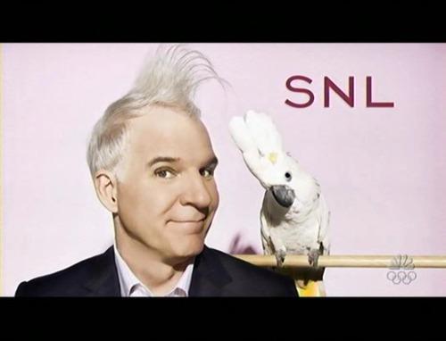 Saturday Night Live Steve Martin SNL Bumpers
