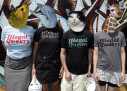 "projectqueer:  pomonothomo: [picture: four people wearing animal masks and shirts that say ""illegal queers"" in direct response to american apparel's ""legalize gay"" campaign.]imthefuckingdj: ""Legalize Gay""? Eff that!We're selling Illegal Queers t-shirts to raise funds for the Mount Hope Infinity's legal fees.Price: $10-$20.Sizes: S-XLColorways: baby blue with red  letting, black with pinky gold lettering and aqua lettering, and gray  with black lettering.TO BUY THEM: Donate $10-$20 to our paypal account, THEN send us an  email at bashbackinfinity(at)hushmail(dot)com, ideally using the same email you used to donate with, telling us  the size and color you want as well as the address we should send them  to. Cop some fresh swag for a good cause!"