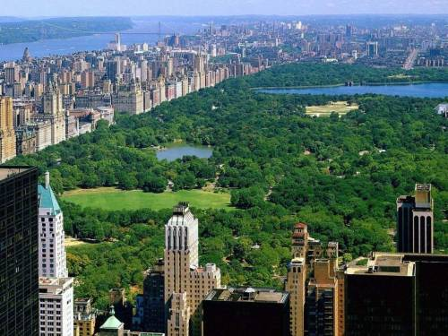 "puddinheadwilson:  ""Perhaps the most amazing thing about Central Park is how little tax money goes into maintaining it. Though it is still ultimately the city's responsibility, the park has been managed since the 1980s by the nonprofit ,  and it relies on private donations for most of its budget. The marriage  between the city and the Conservancy has been a fruitful one. Can this  model, known as a public-private partnership, restore and invigorate all  of New York's green spaces, including neighborhood parks in less  affluent areas? It's an important question, not only as the city faces  tough fiscal times but as urban planners increasingly view parks as  tools of economic development and public health. People who  lived in New York in the 1970s and early 1980s still remember how  forbidding the parks were in those dark days. Douglas Blonsky, now head  of the Central Park Conservancy and thus Central Park's administrator,  recalls that when he started working there in 1985, most of the benches  were broken and most surfaces sported layers of graffiti. ""The Great  Lawn was a dust bowl,"" he says, at least when the weather was dry; when  it rained, seas of mud meant that ""you could barely walk through the  park for days."" But  where ""government had given up,"" citizens stepped in. In 1980,  landscape designer Elizabeth Barlow Rogers and others founded the  Central Park Conservancy, whose original purpose was to raise money,  stop the park's decline, and restore several of its major landmarks. The  city eventually gave the Conservancy the lion's share of day-to-day  control of the park.Because its workers weren't organized into public-sector unions, the Conservancy had a great deal of freedom to institute private management practices—above all, emphasizing accountability. The park is now divided into 49 sections, with a master gardener responsible for the condition of each. About 85 percent of the Conservancy's annual budget comes from private donations,  mostly from people who live within a ten-minute walk of the park.  ""Obviously, it's an incredible backyard, and look what it does to your  real-estate values,"" says Blonsky.""  Private sector fixes for government problems: remove graft, instill accountability, watch good things happen."