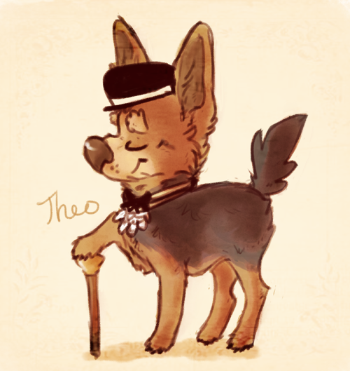 So much dapperness on my dash, and Theo wanted to join in, for he is a dapper herdier.and I can't believe summer break is over already and I have to move back to college tomorrow. Can't really complain though, because I've been home since May 4th, and had a great time, but I'm still not ready to go back haha. I really am a huge baby when it comes to starting school again, it's ridiculous asdfhjkl. Anyway, no internet until Comcast comes to set it up, which will hopefully be sooner than later :b