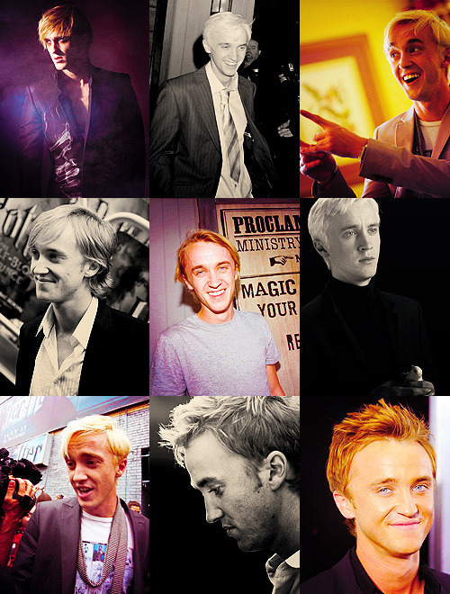 50 Flawless Human Beings→ Tom Felton