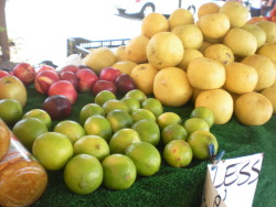 Lots of Citrus! Farmer's Market, Carlsbad, CA
