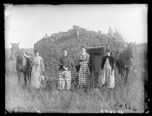 coolchicksfromhistory:  The Chrisman Sisters on a claim in Goheen settlement on Lieban (Lillian) Creek, Custer County, Nebraska.  From left to right  Hattie, Lizzie, Lutie, and Ruth. Lizzie Chrisman filed the first of the sisters' homestead claims in 1887 while Lutie filed the following year.  Because of age restrictions on homesteaders, Ruth and Hattie waited until 1892 to file their claims.   Many homesteaders found that a single claim could not sustain a family, so combining resources was a good solution. Together, the Chrisman sisters' claims totaled 1,920 acres. The sisters took turns living with each other in order to fulfill the five-year residency requirement without living alone.  Girl. Power.