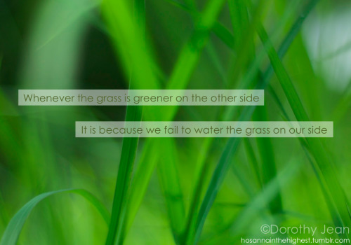 Whenever the grass is greener on the other side it is because we fail to water the grass on our side. If you can't see the poop on the other side it is because you haven't got close enough. Every filed has its own poop.