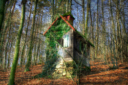 What's even better than an image of a forest? A teeny tiny twee cottage in a forest!! This is somewhere in Germany. Carmen Neumeier on beautyineverything.com