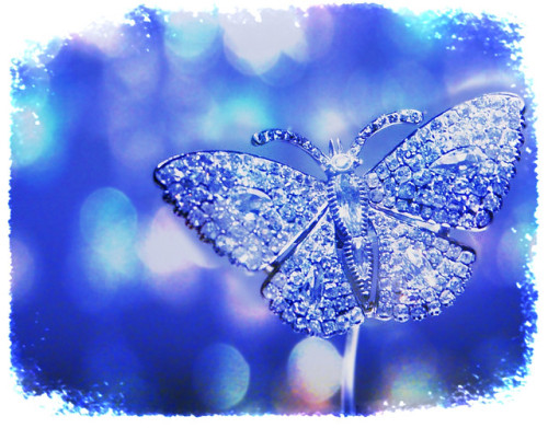 fightingfishy:  We are like butterflies who flutter for a day and think it is forever. There is nothing in a caterpillar that tells you it's going to be a butterfly.