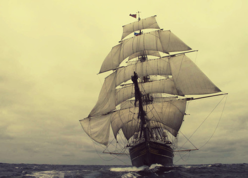 springtow:  CLIPPER STAD AMSTERDAM From the Dutch TV series Beagle: On the Future of Species