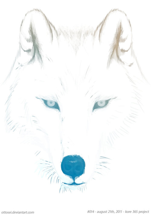 wolf by ~Ottosei #014 - august 21th,2011accompany..