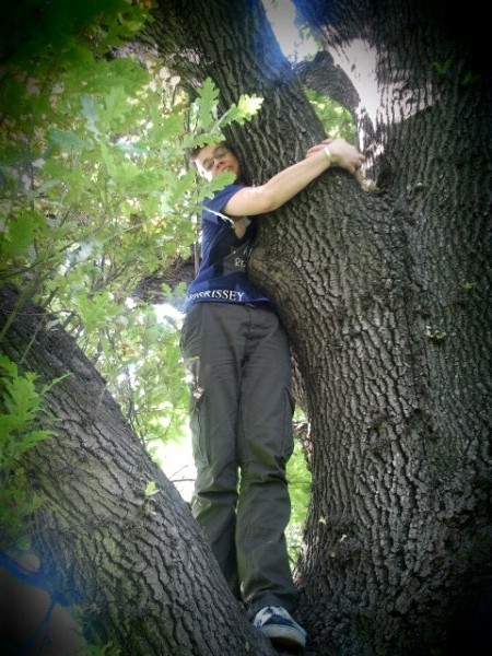 I climb and comfort trees for a living.