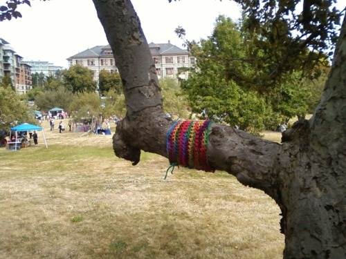 Yarnbomb at the fibre festival (Fibrations) in Victoria, B.C.