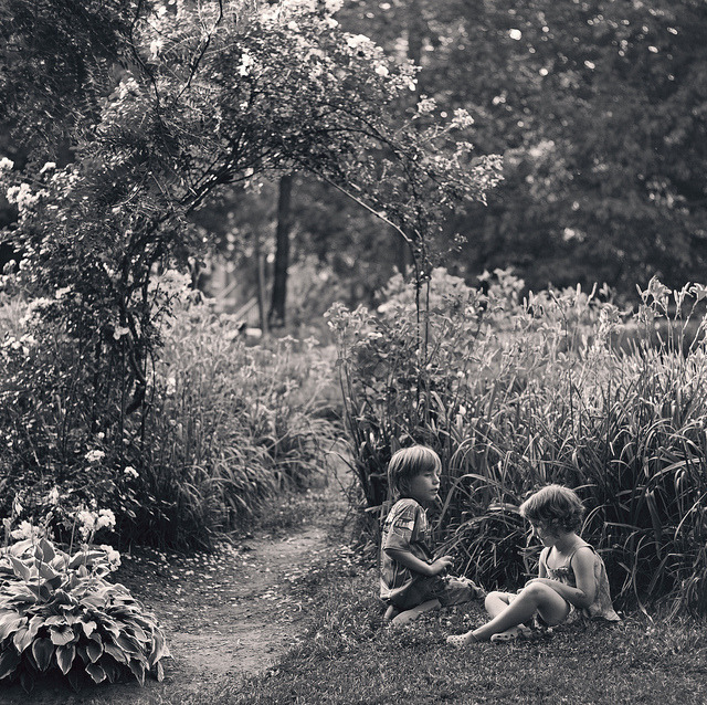 the garden by beth wernet on Flickr.