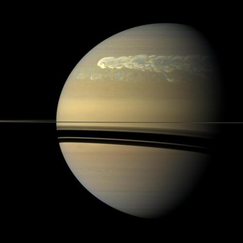 itsfullofstars:    The huge storm churning through the atmosphere in Saturn's northern hemisphere overtakes itself as it encircles the planet in this true-color view from NASA's Cassini spacecraft. This picture, captured on Feb. 25, 2011, was taken about 12 weeks after the storm began, and the clouds by this time had formed a tail that wrapped around the planet. Some of the clouds moved south and got caught up in a current that flows to the east (to the right) relative to the storm head. This tail, which appears as slightly blue clouds south and west (left) of the storm head, can be seen encountering the storm head in this view. This storm is the largest, most intense storm observed on Saturn by NASA's Voyager or Cassini spacecraft. Keep reading.
