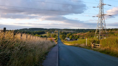 August 21st - Rugeley Road fades into Hayfield Hill in the big dip between Chase Terrace and Cannock Wood, near Castle Ring. This is a great hill to climb, and a very fast downhill run. During this most gorgeous golden hour, Gentleshaw Common glowed in the evening cool. This is a lovely view, of which I never tire.