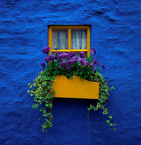 cordisre:  blue wall and window in Kinsale, Ireland (by Mike O'C)