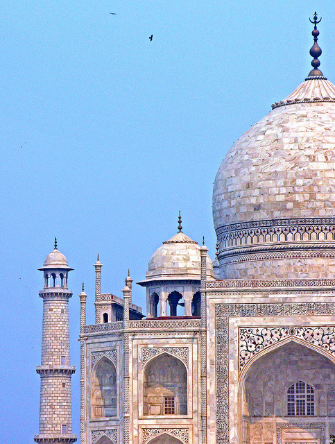 opaaaa:  India-6210 - Details of the Taj Mahal by archer10 (Dennis) on Flickr.