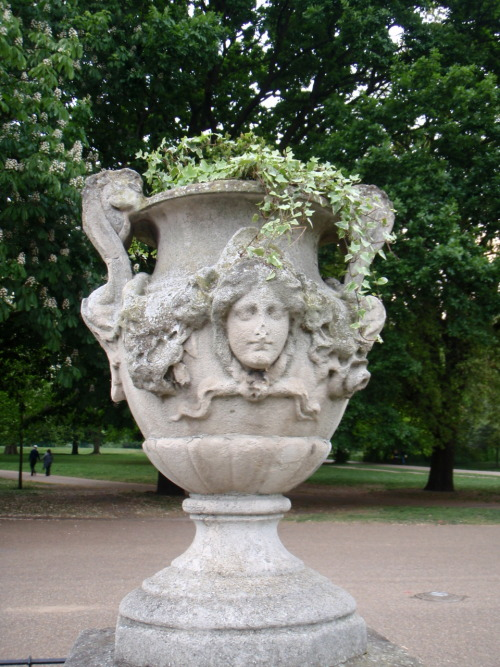 Ivy and stone vase in Hyde Park. London, England.