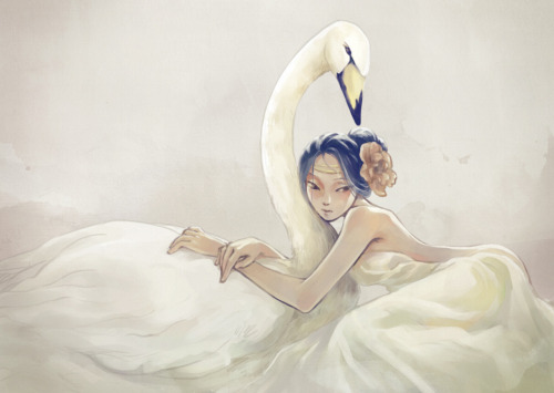 strawberry-bubbles:  'swan' by Vivien Lu