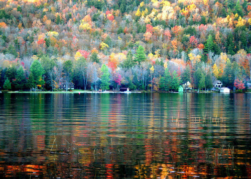 free-wilderness:  congeles: Reflection of Autumn by Lida Rose on Flickr.