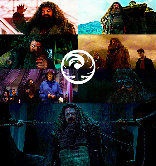 Top 20 Harry Potter Characters | Rubeus Hagrid - (played by Robbie Coltrane)  I love Hagrid as a character because he is so kind-hearted and loving and friendly that you can't not love him. His relationship with the trio is one of the most beautiful relationships in the books and films. He is such an important figure for all three of them and I find it really interesting to read/watch. Robbie is amazing in this role and he plays Hagrid to exactly how I imagined him.
