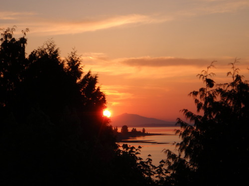 June sunset in Qualicum Beach. Can you spot the crow?