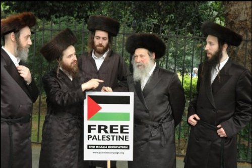 misssrko:  Jews for a FREE PALESTINE!