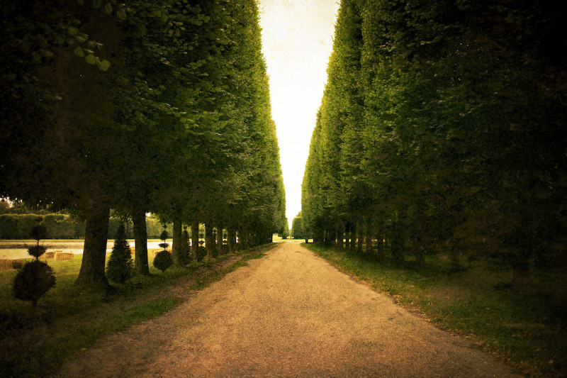 A Lovely Path [Versailles, France] (by elbelbelb2000)