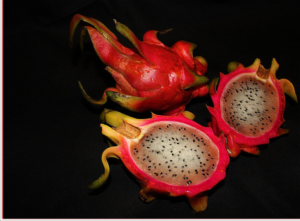 "Dragon Fruit or Pitahaya   A Pitaya (pronounced /pɨˈtaɪ.ə/) or pitahaya (English pronunciation:  /ˌpɪtəˈhaɪ.ə/) is the fruit of several cactus species, most importantly  of the genus Hylocereus (sweet pitayas). These fruit are commonly known  as dragon fruit – cf. Chinese huǒ lóng guǒ 火龍果/火龙果 ""fire dragon fruit""  and lóng zhū guǒ ""dragon pearl fruit"", or Vietnamese thanh long (green  dragon). Other vernacular names are strawberry pear or nanettikafruit.  via: Flickr"