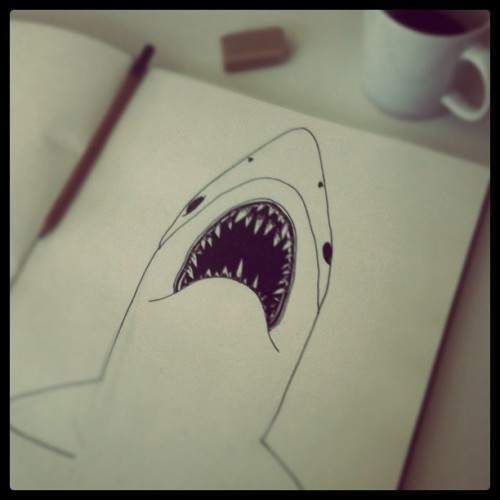 Drawing a shark…
