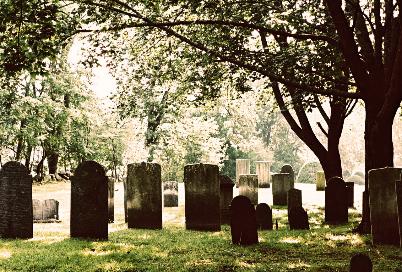 The green grass and stone gray of graveyards has always been the most striking combination to me.  On film that contrast is a completely different story, and I'm still trying to decide if I like it.  Fuji Provia 100f