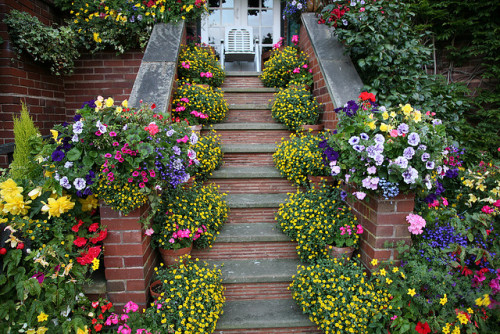 wickedliesandbutterflies:  Upper garden late summer - balcony steps by Four Seasons Garden on Flickr.