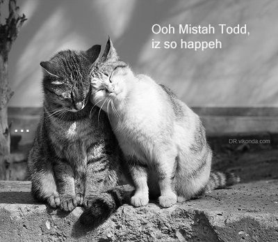 sondheimlolcats:  I cld eat u up, I rly cld!  Sondheim lolcats is my favorite thing ever
