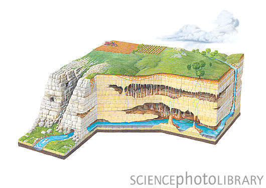 "inlovewithgeosciences:  Karst landscape geology ""Cutaway artwork showing the features of a karst limestone landscape formed by erosion. The limestone rock has been shaped by natural chemical erosion. Carbon dioxide in the air dissolves in rainwater to form carbonic acid. This acid erodes the limestone rock as the water flows over it. At far right, a river flows down into the ground to form an underground river (across bottom), emerging at lower left. Two layers of caves are shown, with water seeping down from above to form stalactites, stalagmites, which can join to form large pillars. At left, the rock has been exposed, forming a limestone pavement."""