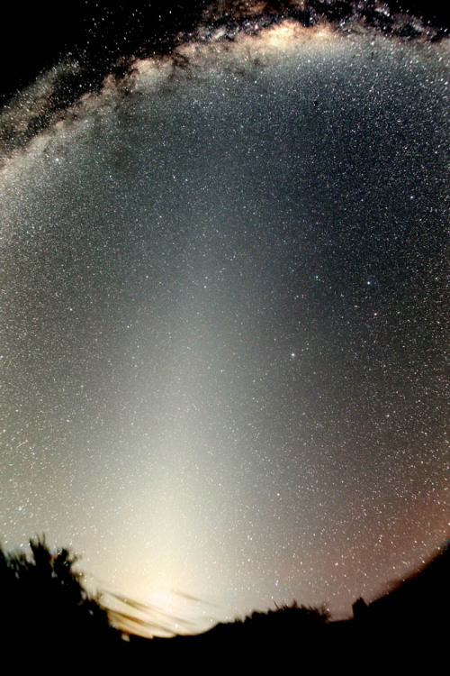Zodiacal Light and the False Dawn Once considered a false dawn, this triangle of light is actually Zodiacal Light, light reflected from interplanetary dust particles. Credit & Copyright: Stefan Seip