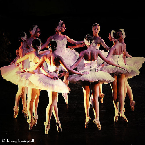 Imperial Russian Ballet's Swan Lake 01 by Jeremy Breningstall on Flickr.