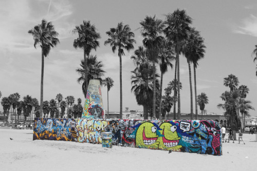 I still have yet to go to Venice beach :(